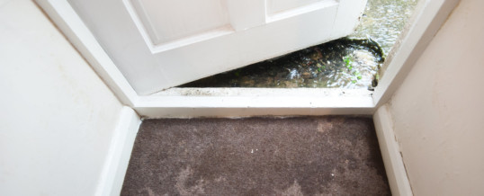 7 Ways You Can Deal With Basement Water Seepage