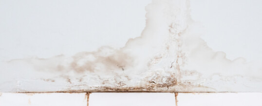 Interior Basement Waterproofing: Everything You Need To Know