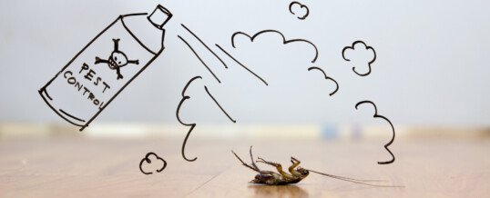 All the Reasons To Include Waterproofing With Your Home's Pest Control