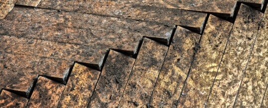 How To Remedy Subfloor Water Damage in Your Home's Basement